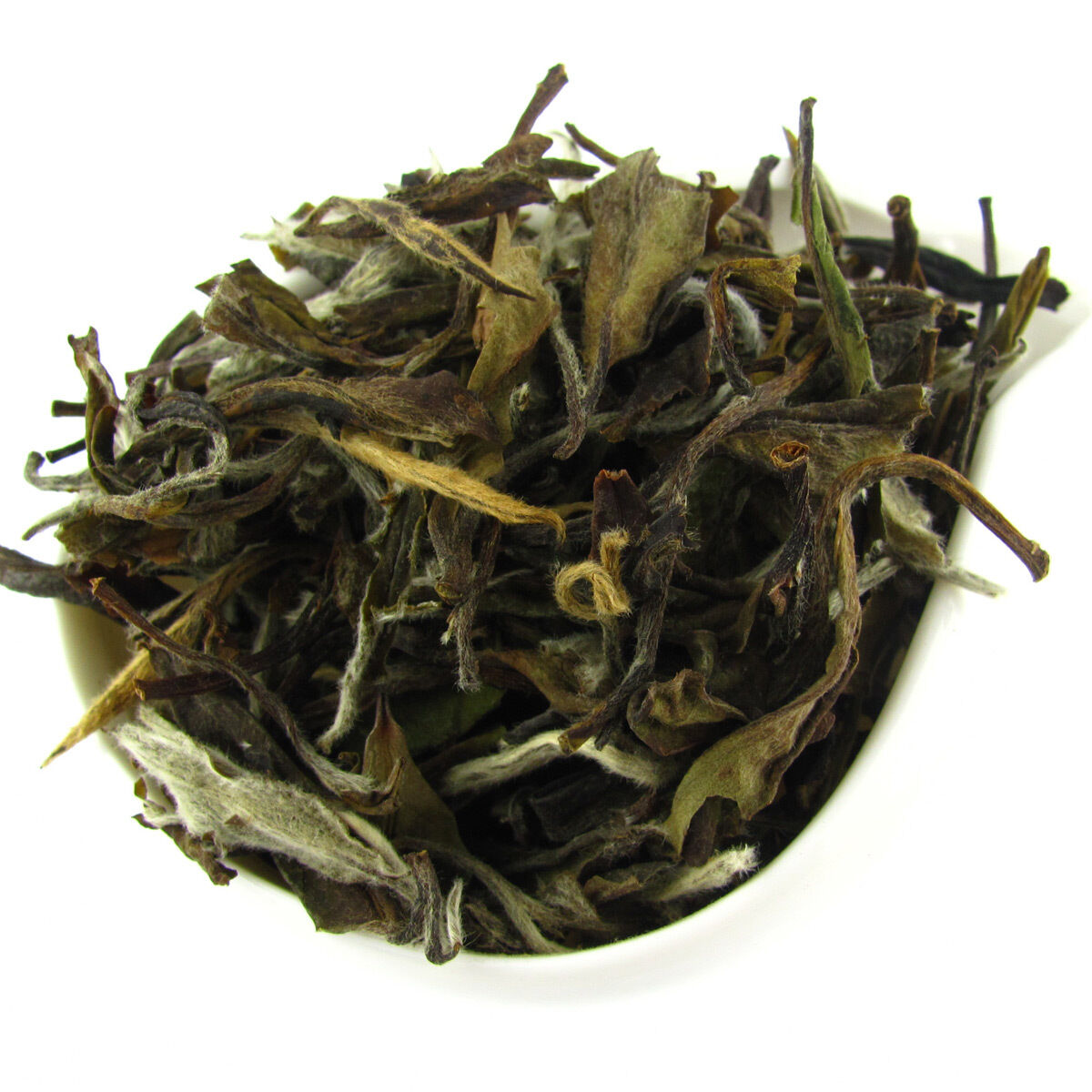 shou mei white tea